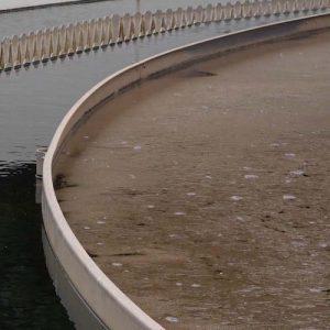 Wastewater sludge small