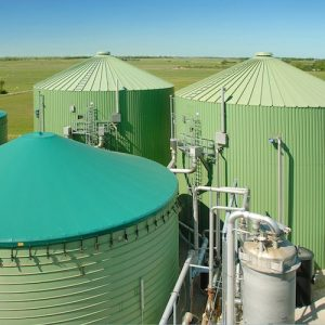 Biogas production small