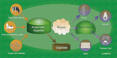 Biogas production schematic
