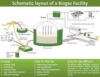 Schematic of a typical biogas production plant